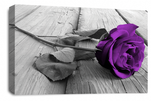 Rose Flower Canvas Wall Art Purple Grey White Floral Picture Print